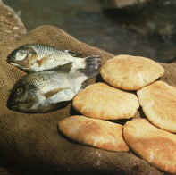 Loaves-fishes-tilapia002